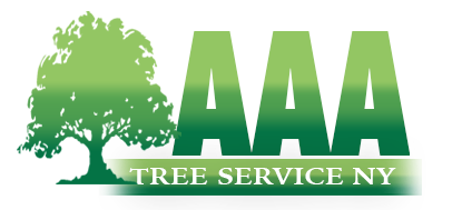 Tree service Nassau County ,Suffolk Long island
