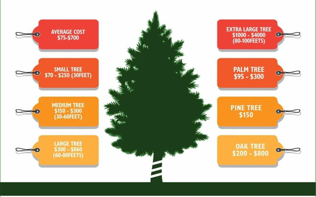 Tree Removal Cost Average Tree Trimming Cut Down Tree