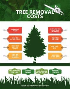 Tree Removal Average Cost Estimate Aaa Tree Service